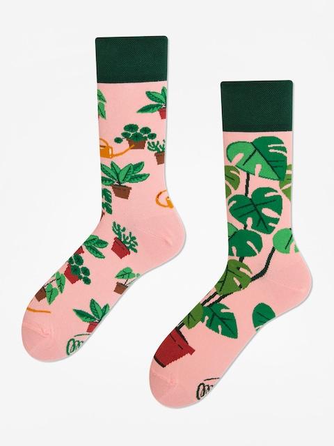 Many Mornings Plant Lover Socken (pink/green)