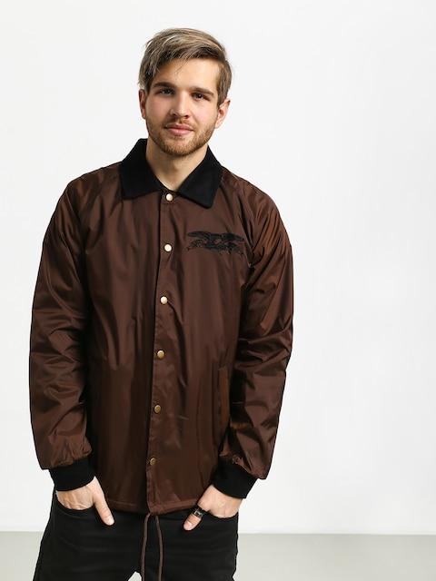 Antihero Bsc Eagle Emb Jacket (brown)