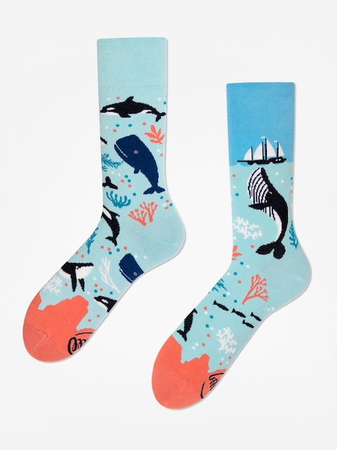 Many Mornings Ocean Life Socks (light blue)