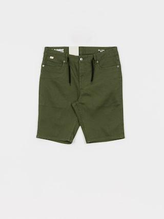 Element E02 Color Wk Shorts (black forest)
