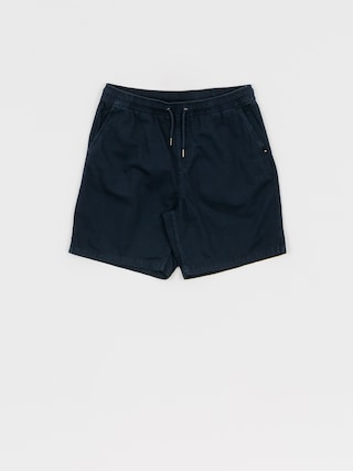 Quiksilver Brain Washed Shorts (blue nights)