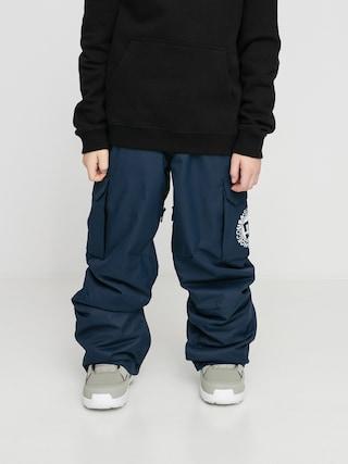 DC Banshee Snowboard pants (black iris)