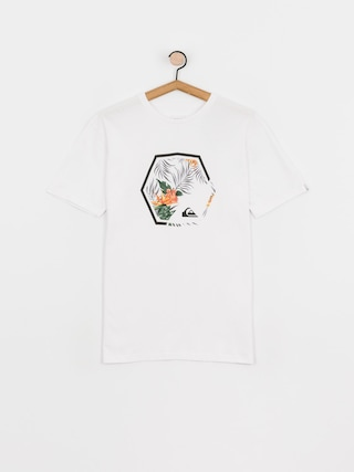 Quiksilver Fading Out T-shirt (white)