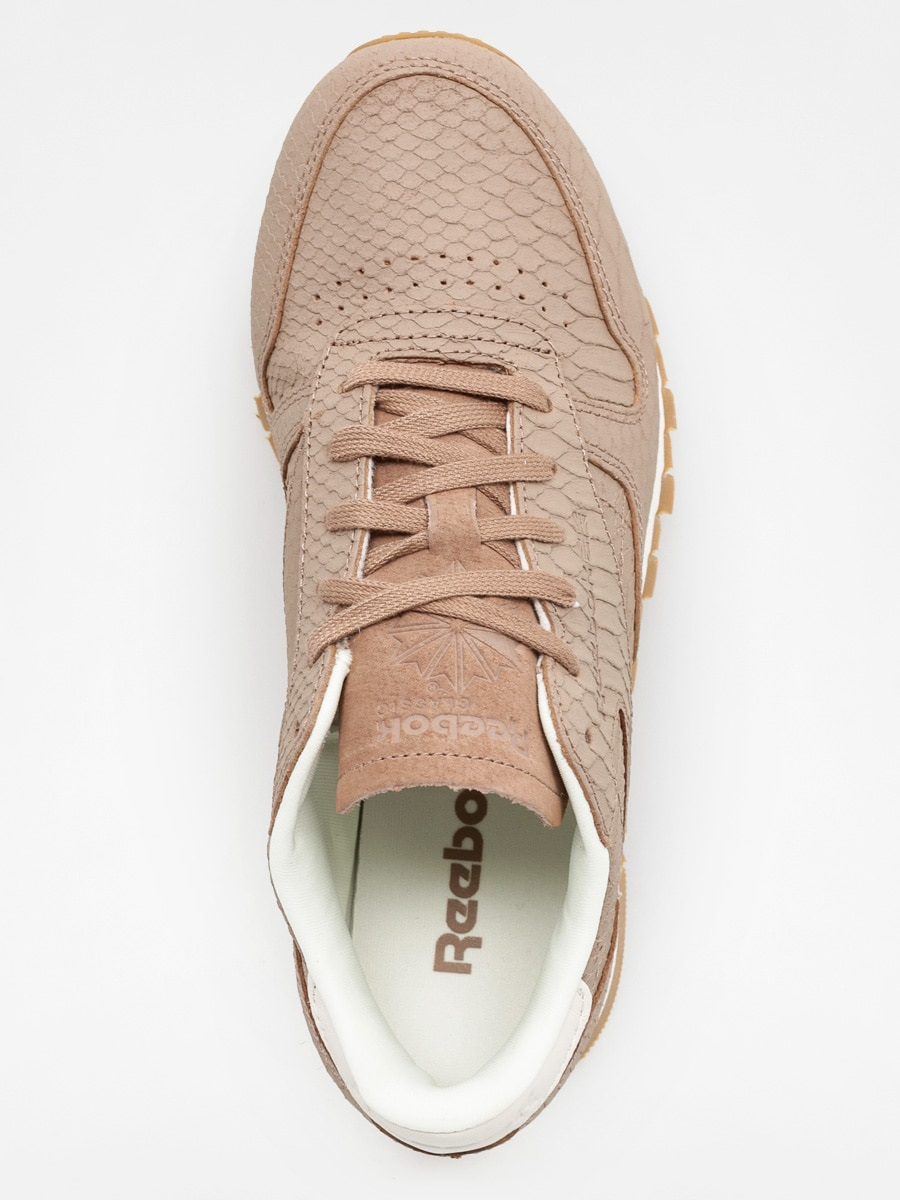 Acompañar apaciguar Tengo una clase de ingles  Reebok Sneakers Classic Leather Clean Exotics Wmn (taupe/chalk)