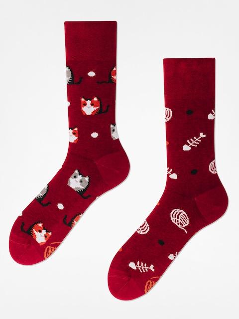Many Mornings Socks Playful Cat (maroon)