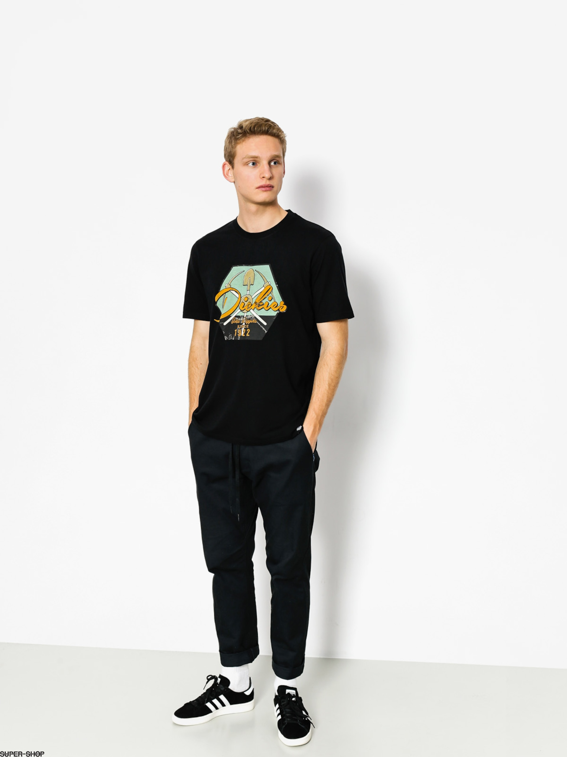 Dickies T-Shirt Ardmore (black)