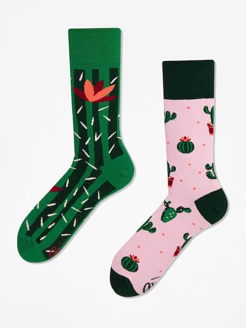 Many Mornings Socks Summer Cactus (green/pink)
