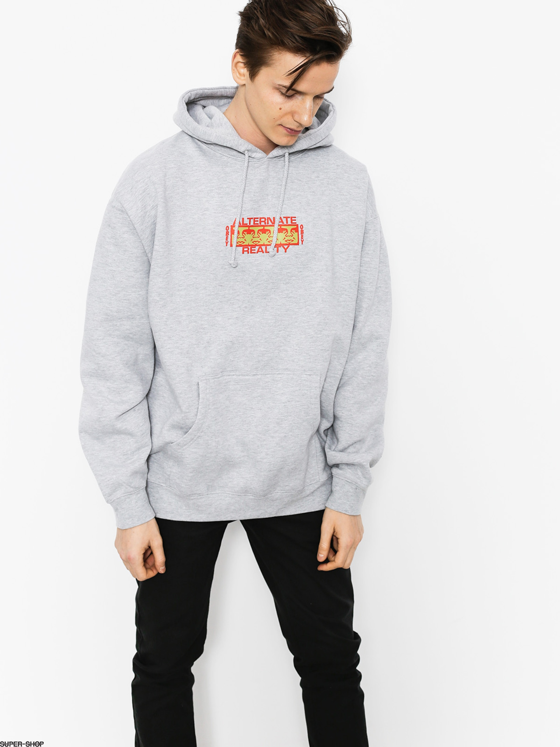 OBEY Sweatshirt Alternate Reality HD (hea)