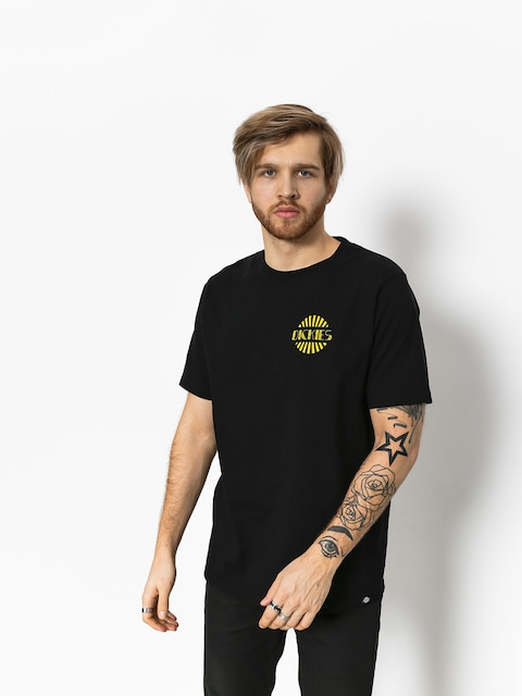Dickies T-Shirt Austwell