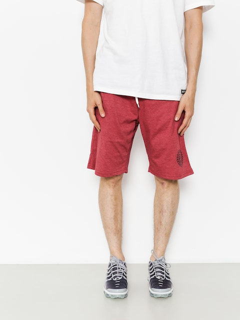MassDnm Shorts Base (heather claret)