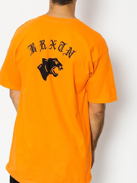 Brixton T-shirt Gato Stnd
