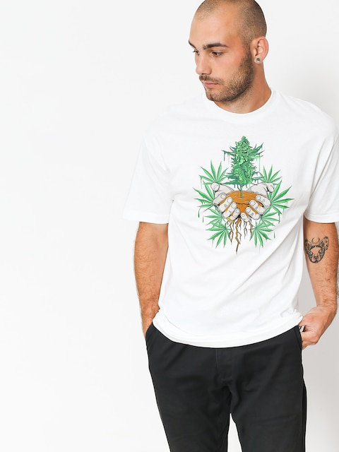 DGK T-Shirt Roots