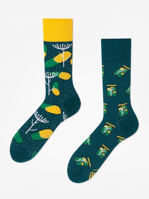 Many Mornings Pickles Socks (green)